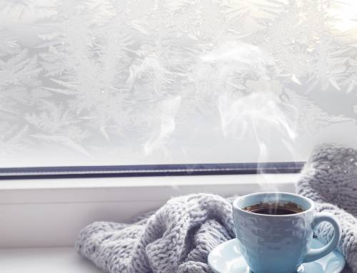 10 Tips For Holiday Survival
